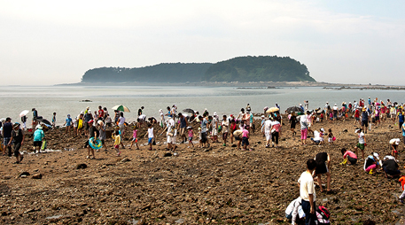 Muchangpo Beach [photo]