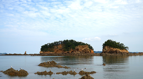 Janggodo Island [photo]